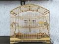 Gaiola Trinca-ferro Premium Marfim
